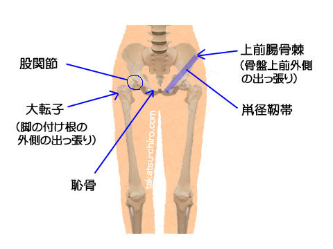痛い 股関節